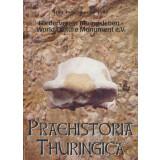 Praehistoria Thuringica, Heft 1