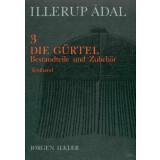Illerup Adal 3. - 4. Die Gürtel, 2 Bände