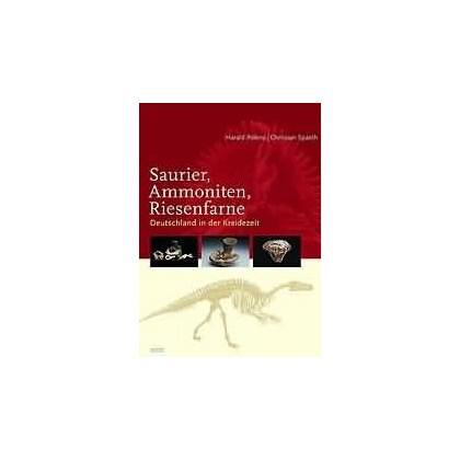 Saurier - Ammoniten - Riesenfarne. Deutschland in der Kreidezeit