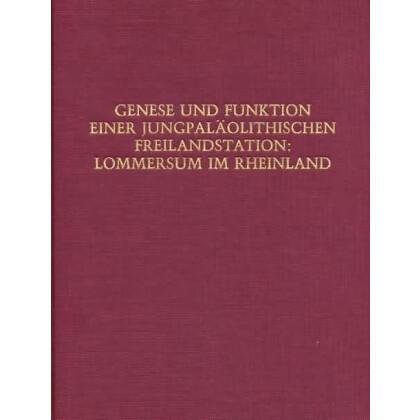 Genese und Funktion einer Jungpaläolithischen Freilandstation: Lommersum im Rheinland