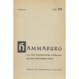 Der Grabhügel 5 von Lemsahl - Mellingstedt aus der...