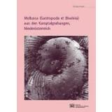 Mollusca (Gastropoda et Bivalvia) aus den...