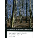 Die Hollende bei Wetter Hessen - Warzenbach