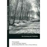 Die Dornburg bei Frickhofen