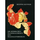 Die römischen Wandmalereien des Magdalensberges