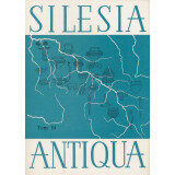 Silesia Antiqua Tom 19. Muzeum Archeologiczne we Wroclawiu
