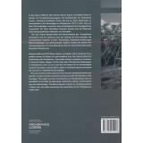 Surenenpass. Archäologie und Geschichte in Attinghausen. Archäologische Prospektion, Band 1