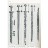 Untersuchungen zur jüngeren Eisenzeit in Schonen